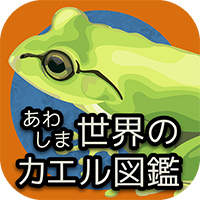 あわしま世界のカエル図鑑