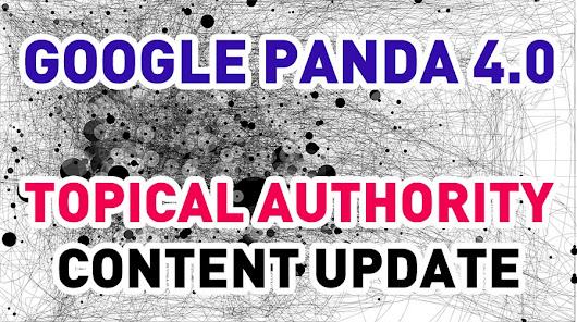 Is Google Panda 4.0 the Topical Authority Content Update of 2014? - Case Study