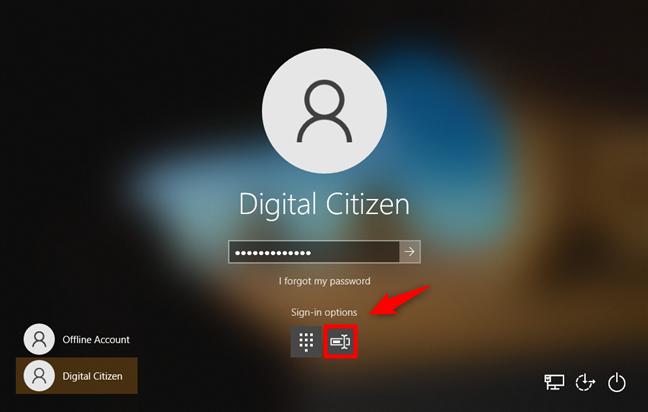 Opciones de inicio de sesión de Windows 10: elección de contraseña
