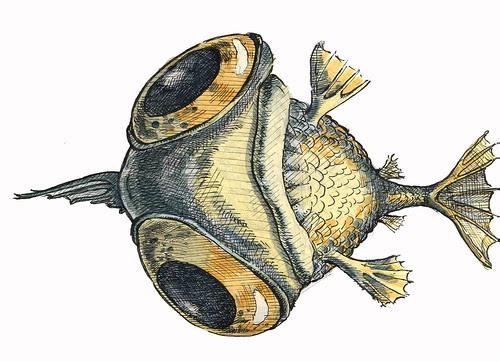 deadfish2