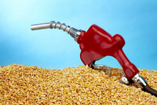 EPA Targets: Win or Loss in U.S. Biofuel Policy? – EarthPeople Media