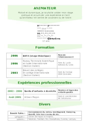 resume format  forme de cv en ligne