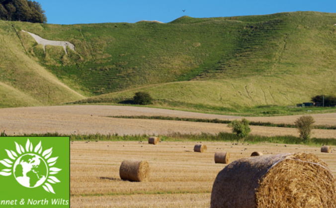 Give Wiltshire voters a Green Party choice in 2015