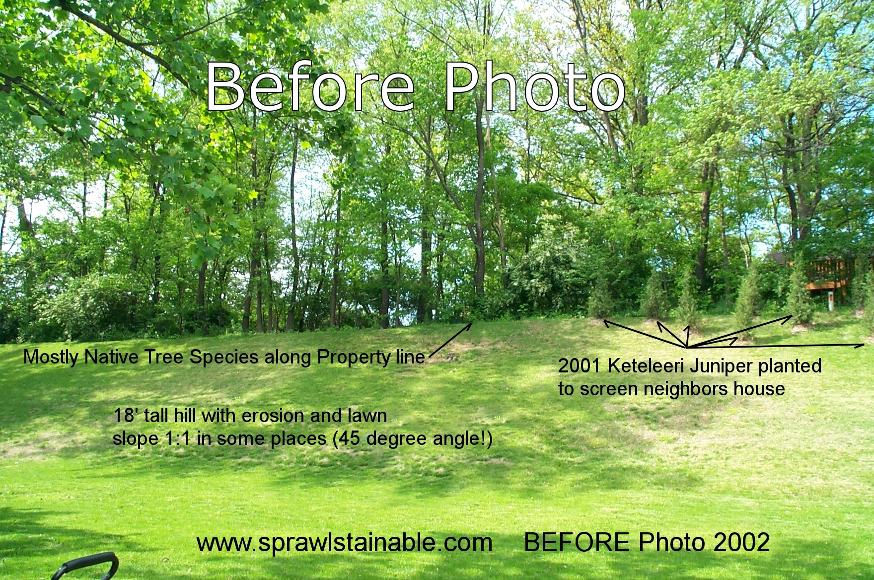 Landscaping On A Hillside Sprawlstainable