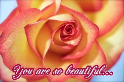 You Are So Beautiful Free Roses Ecards Greeting Cards 123 Greetings