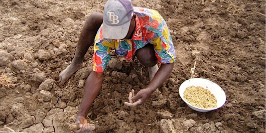 Smallholder Farmers Are The New Global Food Frontier