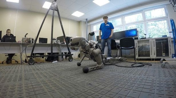 Fedor, the Russian prototype of a humanoid robot