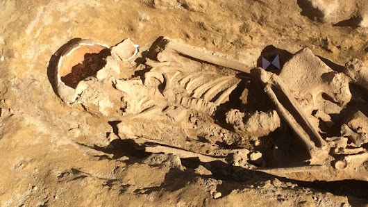 Roman skeletons unearthed at Pontefract building site - BBC News