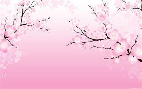 Cherry Blossom Wallpaper 6558 1280x800 px ~ HDWallSource.com