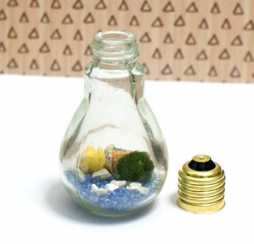How to make an easy Japanese Marimo moss ball DIY light bulb aquarium.