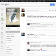 Google Plus Communities Focus on Your Interests