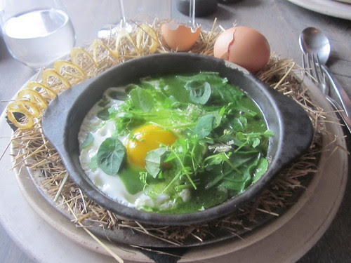 Noma - Copenhagen - August 2012 - The Hen and the Egg, cooked with Hay Oil, Spinach, Nasturium, Oxalis, and Parsley Sauce