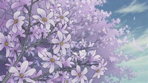 aesthetic flower wallpapers top  aesthetic flower