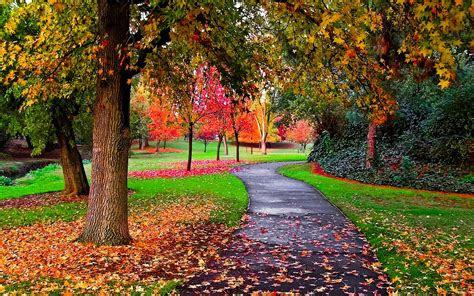 autumn   park autumn wallpaper  fanpop