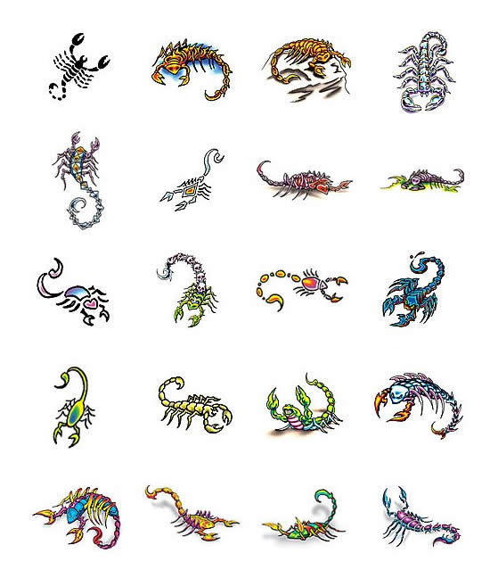 Scorpion Tattoo Designs From your ideas, tattoo artist will often come up