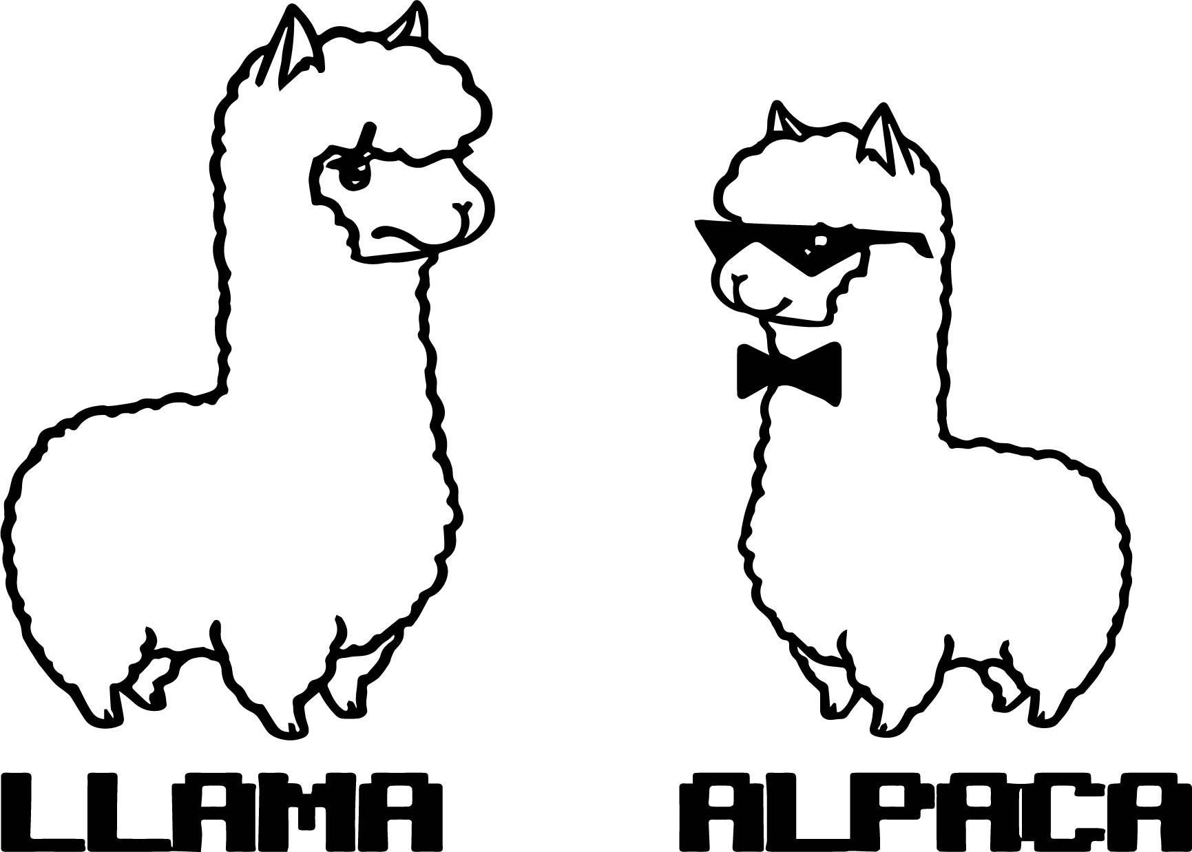 Llama And Alpaca Coloring Page | Wecoloringpage.com