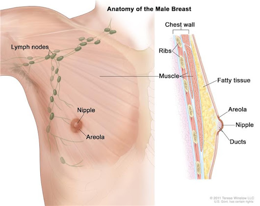 Male Breast Cancer Treatment