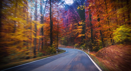 Don't Let the Beauty of Fall Take Away from Your Ability to Drive Safely