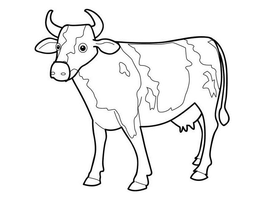 Cow Template Printable - Coloring Home