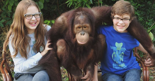 Sibling duo launches foundation to help save endangered animals