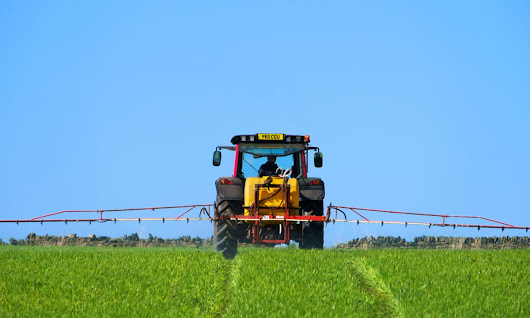 Agricultural fungicides are 'bad news for neurons', study suggests | Science | The Guardian