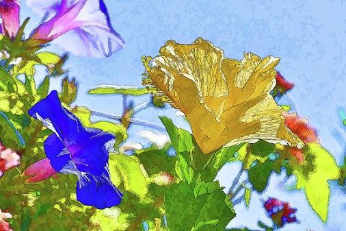 #flowerpainterly #morningglorypainterly #hibiscuspainterly #flowersphotopainted #flowers #flowersmacro...