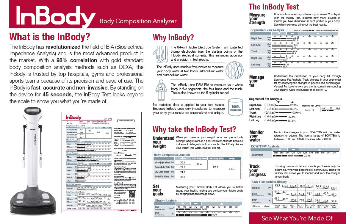 body fat percentage test results