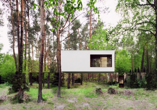 Home That Blends Into Its Environment