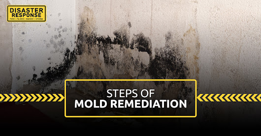 Steps of Mold Remediation
