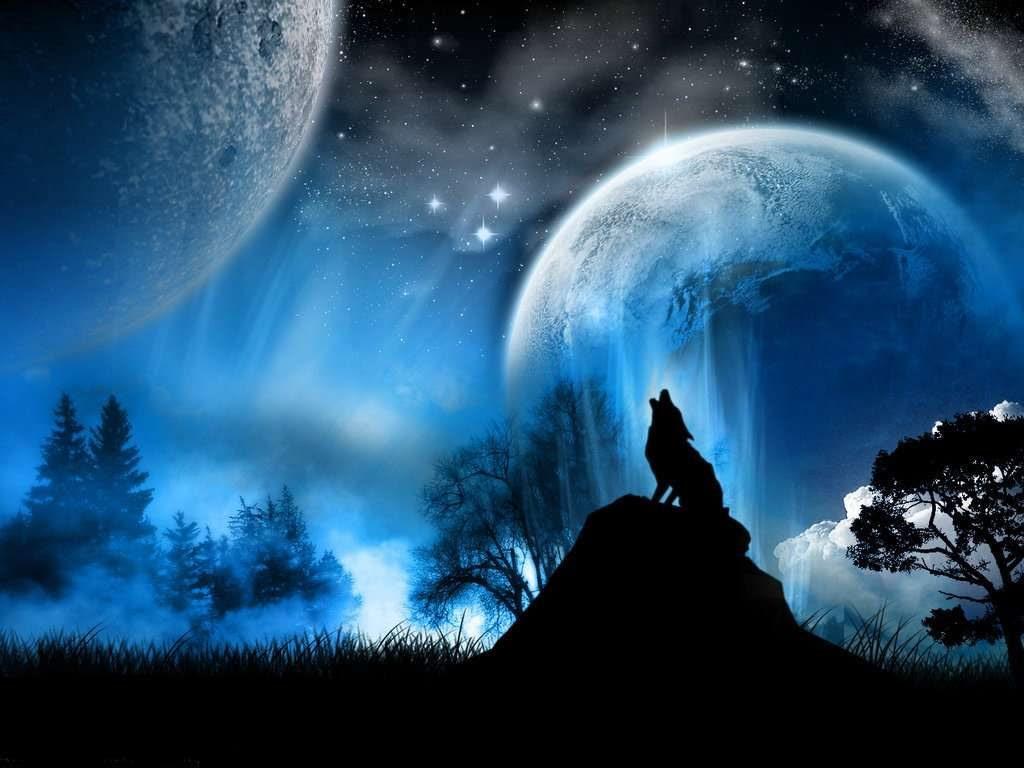 Leyenda De Un Lobo Aullando A La Luna Imágenes Y Fotos