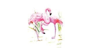 Tuval Boyama Flamingo Biletleri