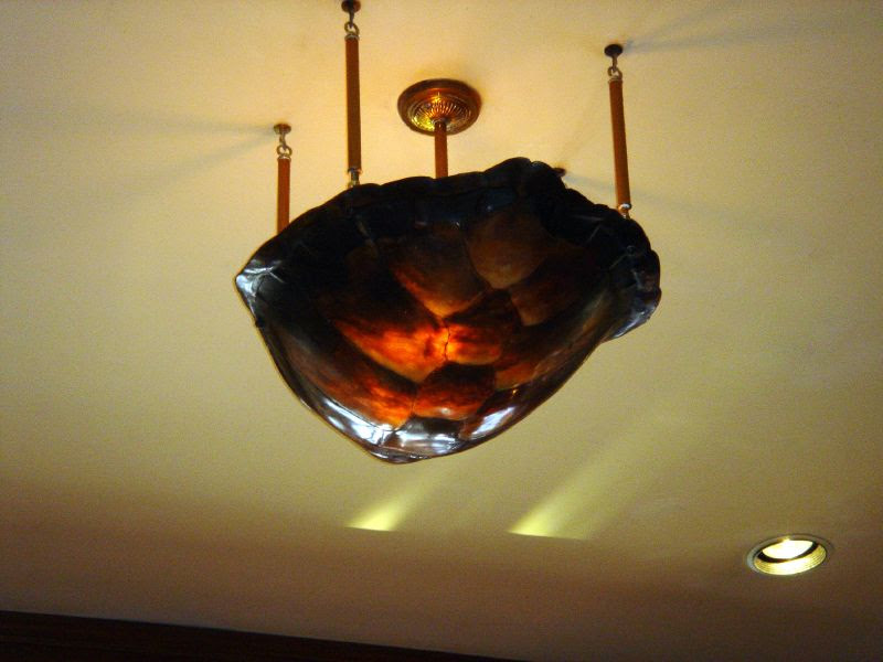 Tortise shell lamp