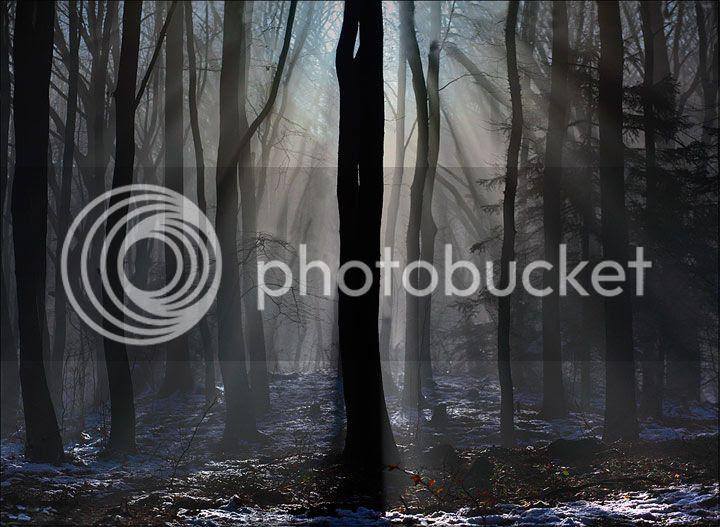 photo Evgeni-Donev-1_zpsbtkgynd6.jpg