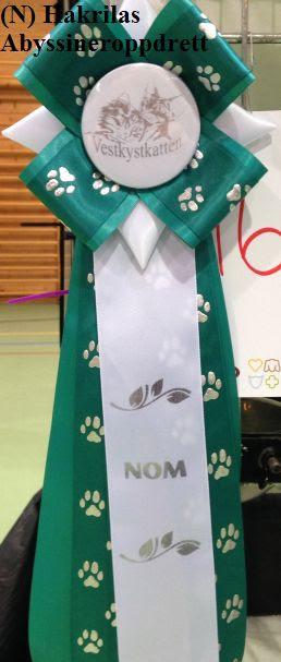 NOM-sløyfen som Estilo fikk 24.08.2014 :)