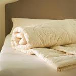 """Sleep & Beyond Washable Wool Comforters, Twin 66"""" x 88"""""""