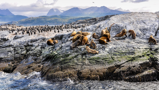 Chilean Fjords & Patagonia: An expedition cruise guide