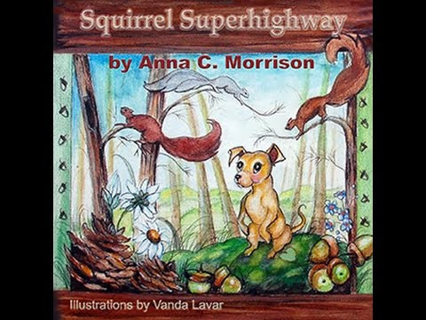 Trailer for Squirrel Superhighway