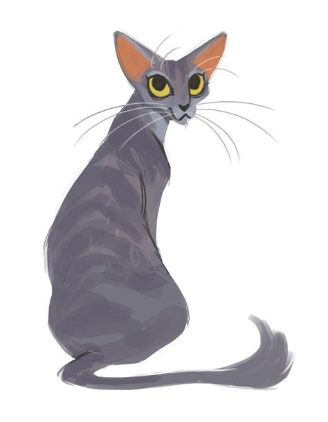 daily cat drawings  oriental cats cat drawing