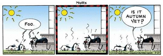 Mutts comic strip for the summer solstice 2007
