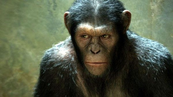Caesar (played by Andy Serkis) will set plans into motion that will affect the entire world in RISE OF THE PLANET OF THE APES.