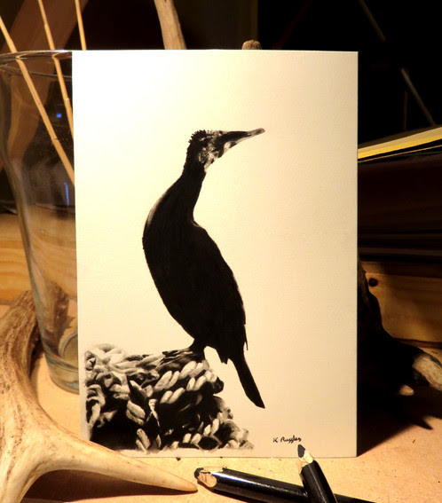 Pair of cormorant drawings, charcoal drawings, wildlife art | Charcoal Drawing | North Yorkshire | Drawing In Dark