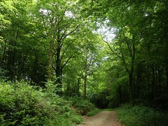 Deputy's Pass nature reserve