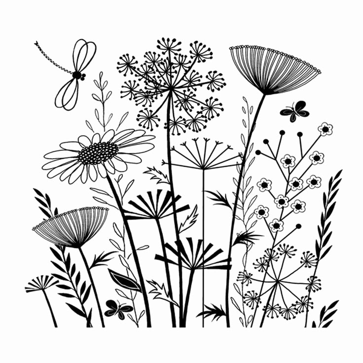 Garden Line Drawing at GetDrawings   Free download