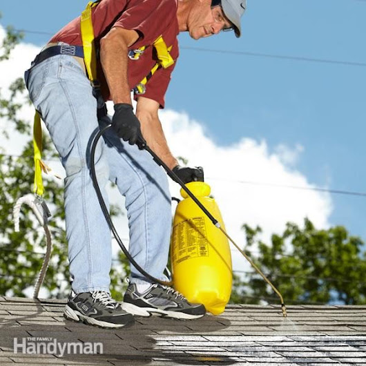 How to Clean Roof Stains | Family Handyman