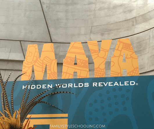 Maya: Hidden Worlds Revealed at the Perot - Family Style Schooling