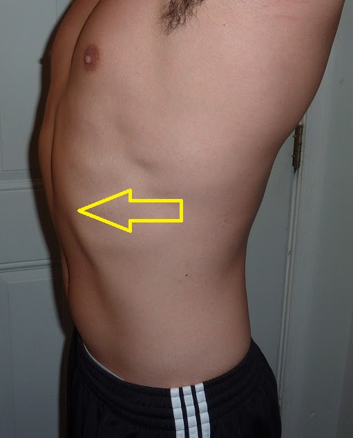 Should We Train The Rectus Abdominis Robertson Training Systems
