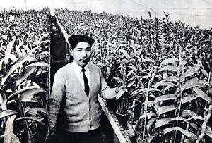 温室で実生の開花を待つ山本二郎