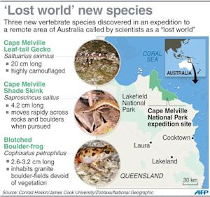 Graphic on three new vertebrate species discovered …
