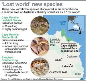 Graphic on three new vertebrate species discovered…