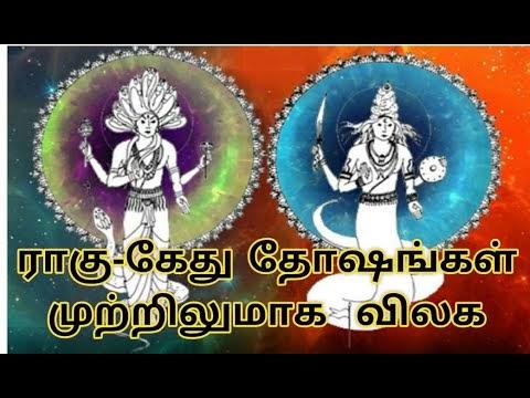 ராகு கேது தோஷங்கள் விலக எளிய பரிகாரம் #vamanansesshadri#rahu#ketu